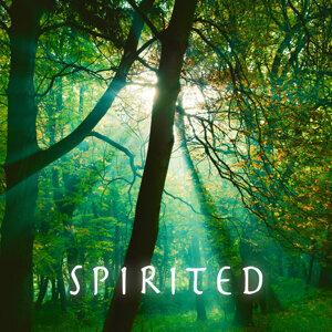 Spirited