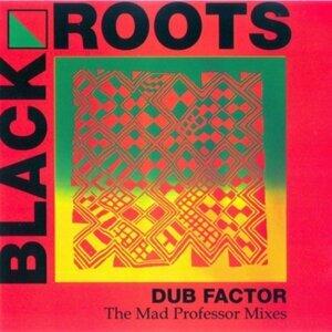 Dub Factor 1 - The Mad Professor Mixes