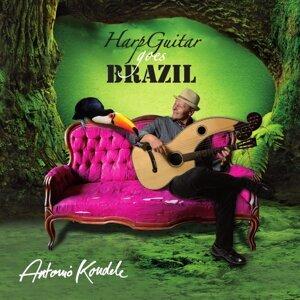 Harp Guitar Goes Brazil