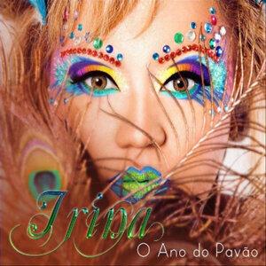 Sem Você (feat. Toto) - Single