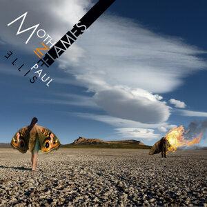 Moth in Flames