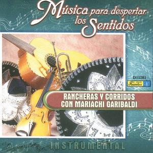 Música para Despertar los Sentidos - Rancheras y Corridos