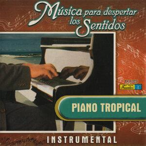 Música para Despertar los Sentidos - Piano Tropical
