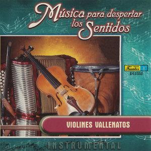 Música para Despertar los Sentidos - Violines Vallenatos