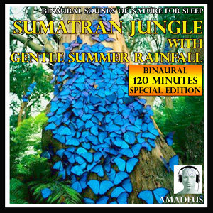 Binaural Sounds of Nature for Sleep: Sumatran Jungle with Gentle Summer Rainfall: 120 Minutes Special Edition