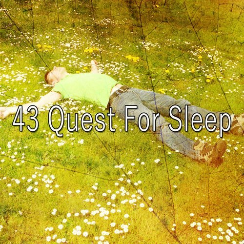43 Quest for Sle - EP