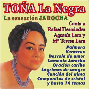 La Sensación Jarocha Canta a Lara y Hernández