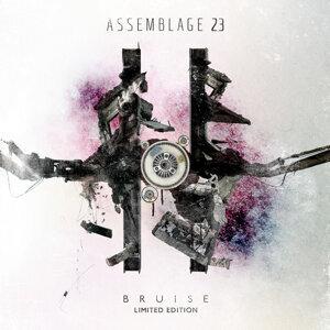 Bruise (Deluxe)