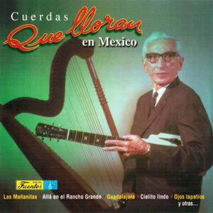 Cuerdas Que Lloran en México