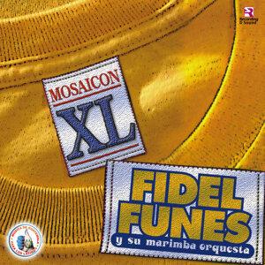 Mosaicon X L. Música de Guatemala para los Latinos