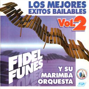 Los Mejores Exitos Bailables Vol. 2. Música de Guatemala para los Latinos