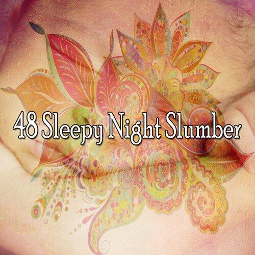 48 Sleepy Night Slumber