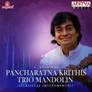 Pancharatna Krithis - Trio Mandolin