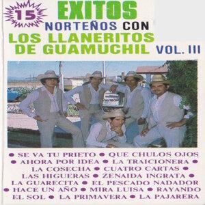 15 Exitos Nortenos Con Los Llaneritos De Guamuchil Vol. 3