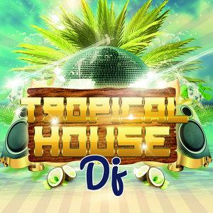 Tropical House DJ