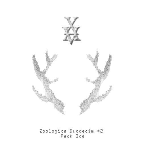 Zoologica Duodecim #2 : Pack Ice