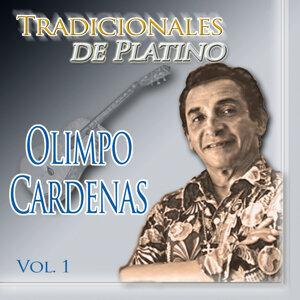 Tradicionales de Platino, Vol. 1