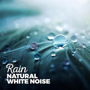 Rain: Natural White Noise