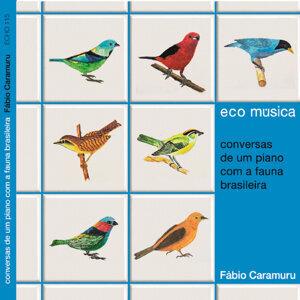 Ecomúsica: Conversas de um Piano Com a Fauna Brasileira
