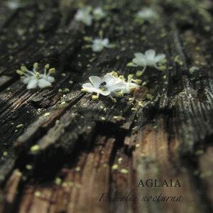 Florealia Nocturna