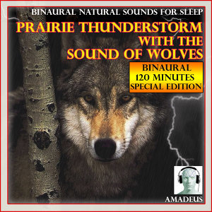 Binaural Natural Sounds for Sleep: Prairie Thunderstorm with the Sound of Wolves: 120 Minutes Special Edition