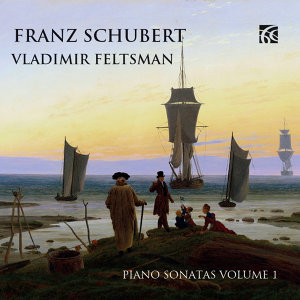 Schubert: Piano Music, Vol. 1