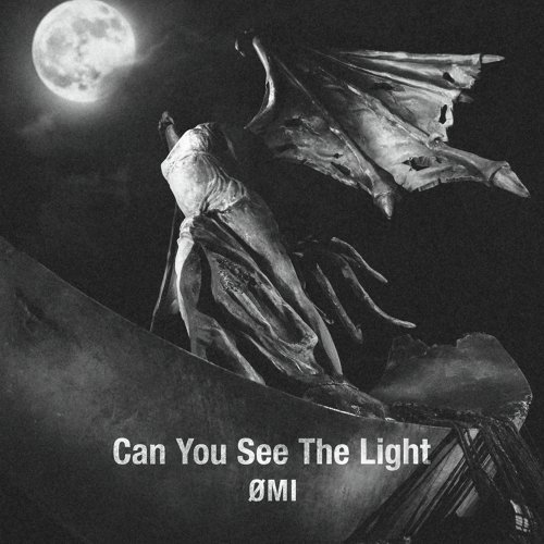Can You See The Light