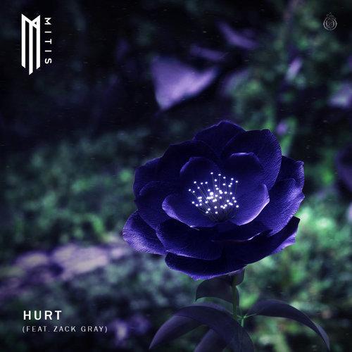 Hurt (feat. Zack Gray)