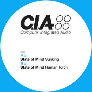 Sunking / Human Torch