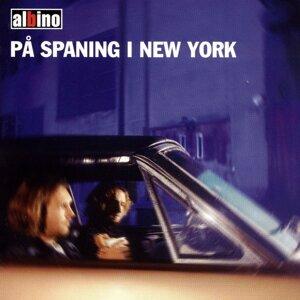 På spaning i new york