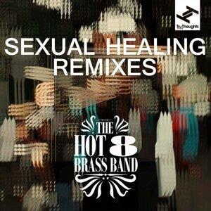 Sexual Healing - Remixes