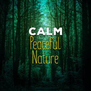 Calm: Peaceful Nature