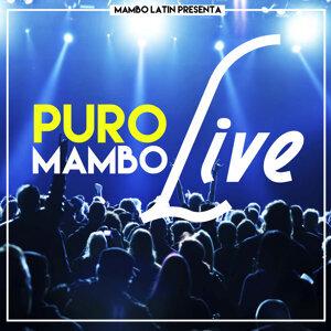 Puro Mambo Live