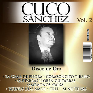 Disco de Oro Volumen 2