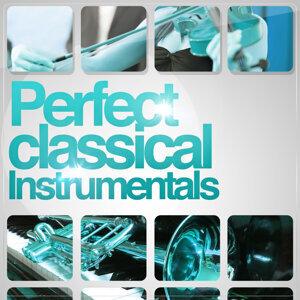 Perfect Classical Instrumentals
