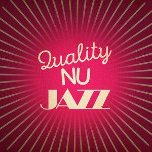 Quality Nu Jazz