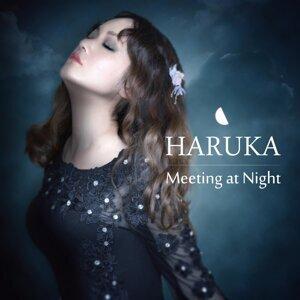 Meeting at Night (Meeting at Night)