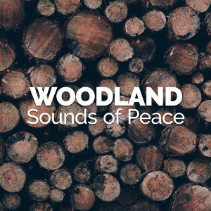 Woodland Sounds of Peace