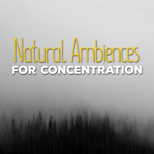 Natural Ambiences for Concentration