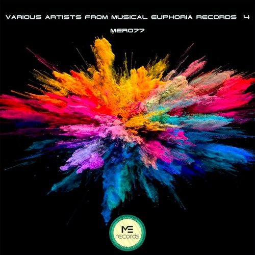 Various Artists from Musical Euphoria Records №4