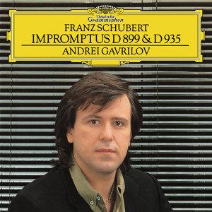 Schubert: Impromptus Op.90, D.899 & Op.142, D.935
