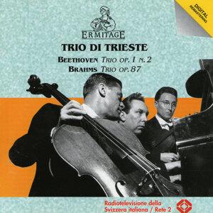 Trio di Trieste, Beethoven, Brahms