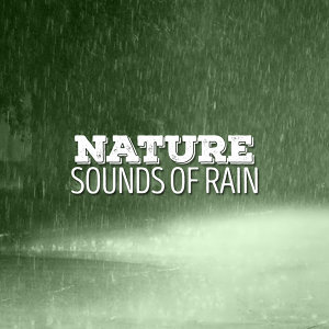 Nature: Sounds of Rain