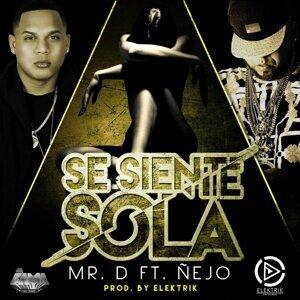 Se Siente Sola (feat. Nejo)