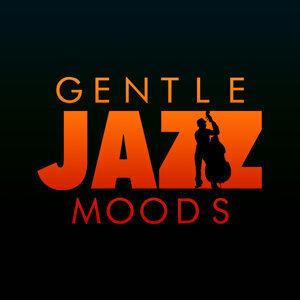 Gentle Jazz Moods