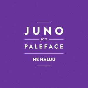 Ne haluu (feat. Paleface)