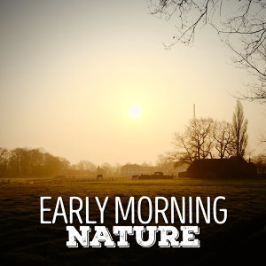 Early Morning Nature