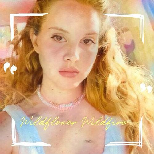 Wildflower Wildfire