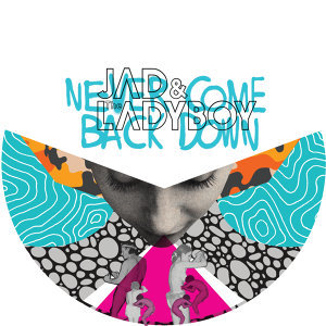 Never Come Back Down