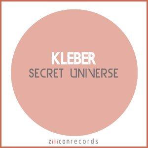 Secret Universe